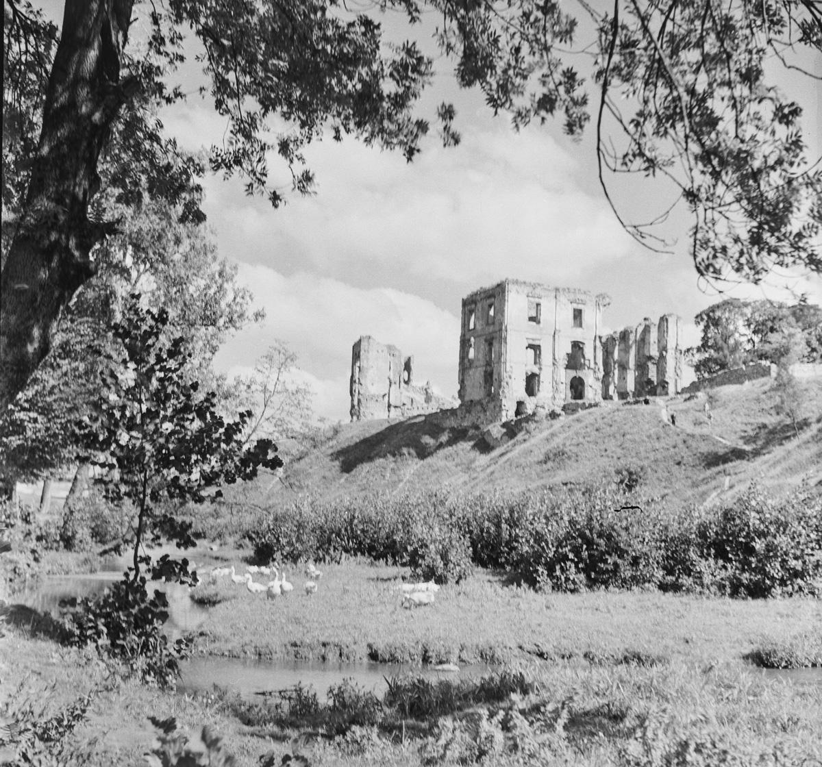 Zamek  – ujęcie normalnie znad rzeki