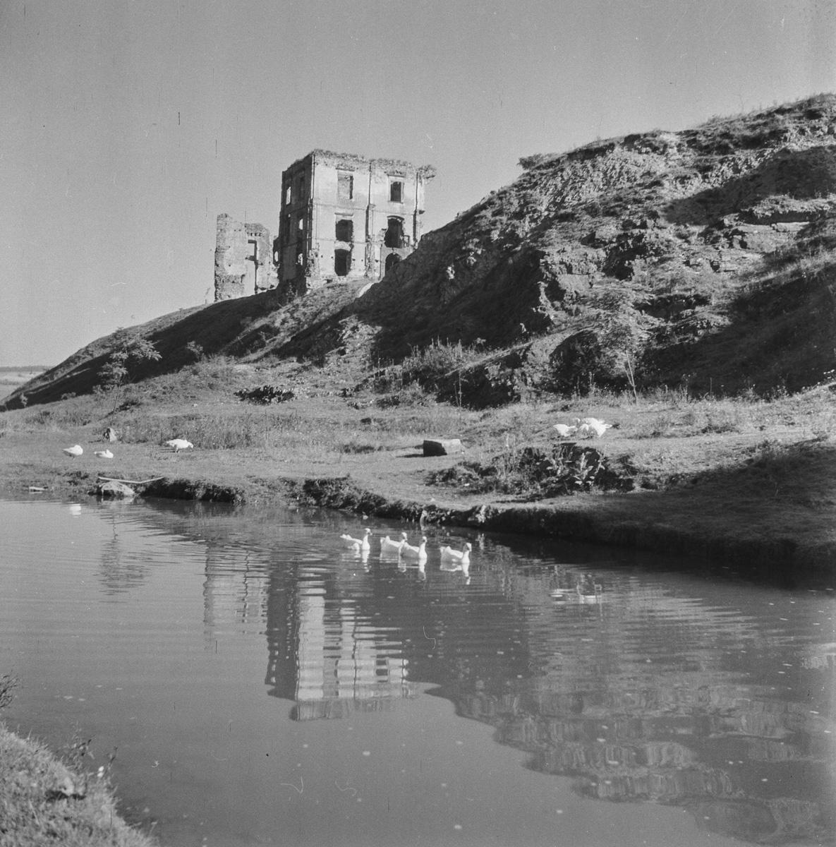 Zamek gęsi i odbicie w wodzie