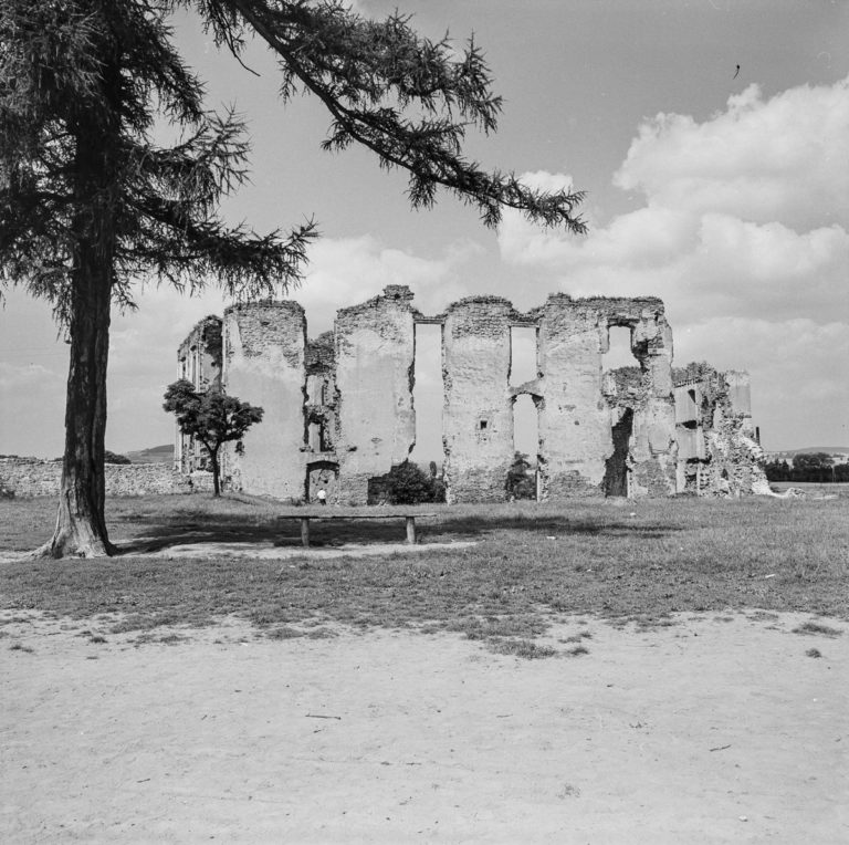 Ruins of the castle
