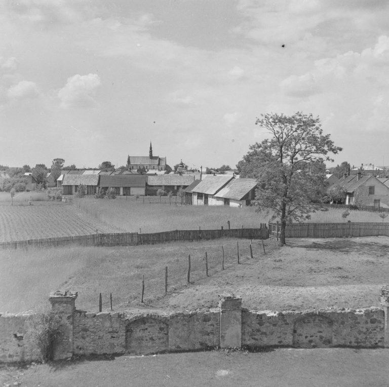 Widok z klasztoru na miasto z grupą ptaków