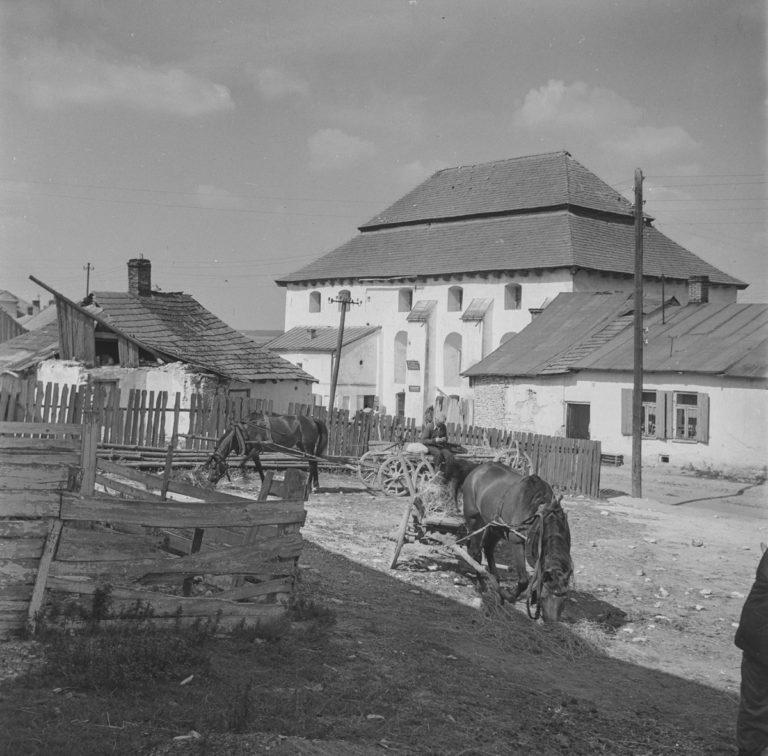 Zbór kalwiński z końmi
