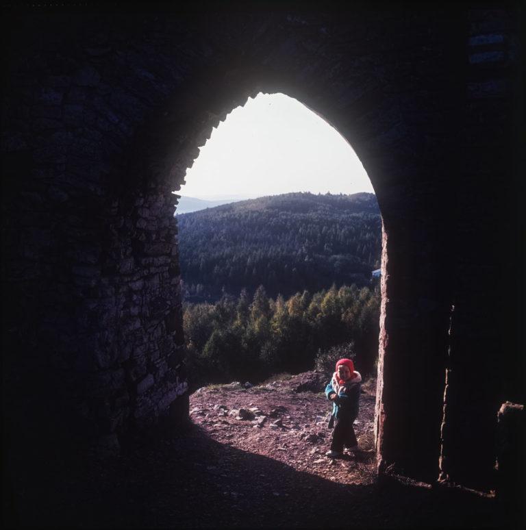 Brama do zamku