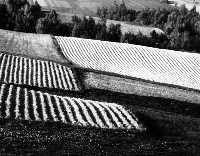 Mount Klonówka slope