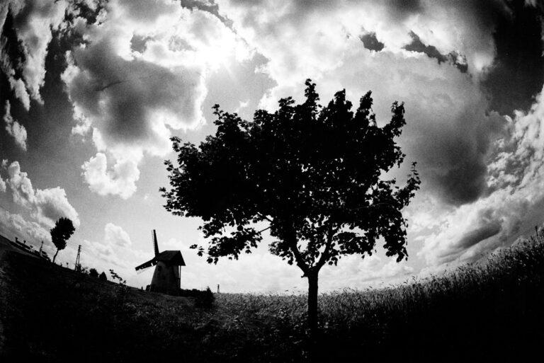 Krajobraz z wiatrakiem