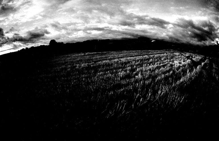 Suwalskie krajobrazy