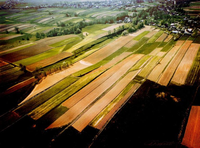 Masłowskie pola