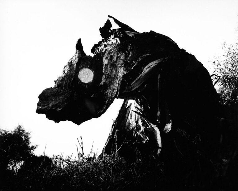 Potworek