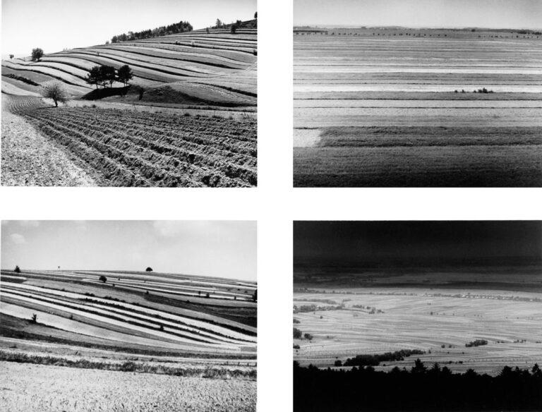 9A Field strips