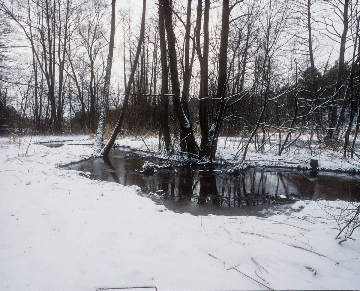 Rzeka Bobrza Zagnańsk k – Bartka